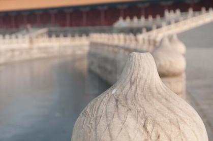Forbidden City Lotus