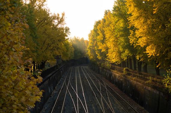 Northshore Rails I