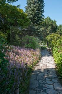 Jardin Botanique de Montreal
