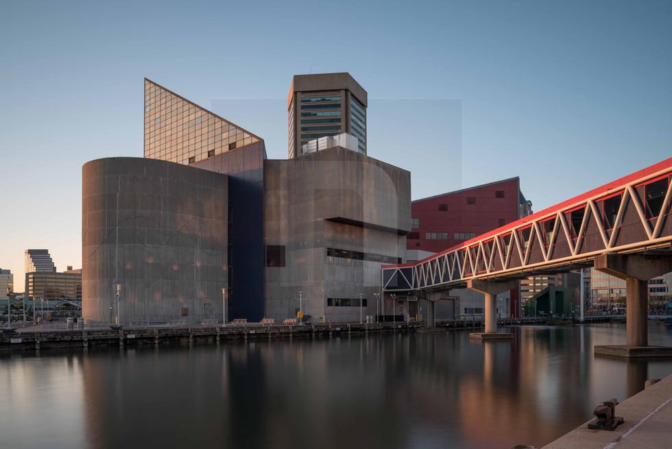Baltimore Aquarium I