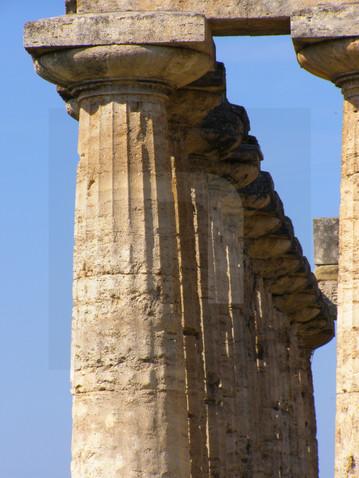 Paestum Columns