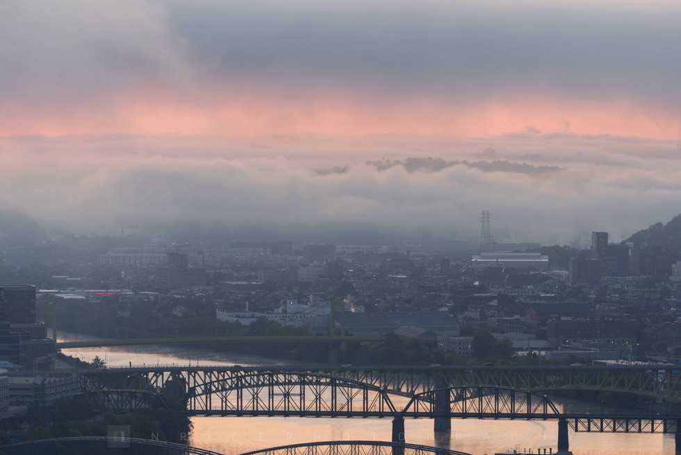 Foggy Sunrise V
