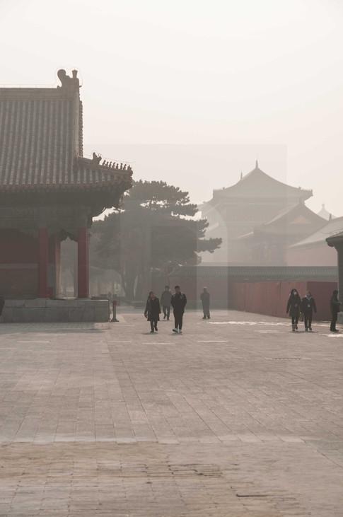 Forbidden City V