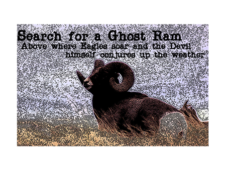 Search for a Ghost Ram