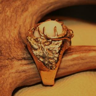 Gold Elk Ivory mans ring