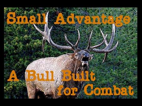 Small Advantage