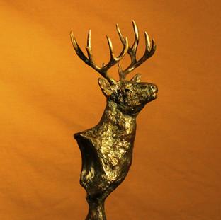 """Timber Buck"""