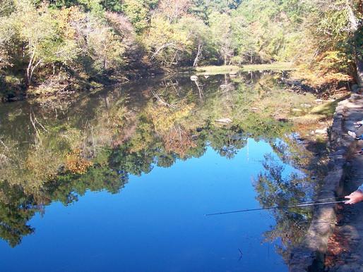 Fly fishing on the Little Missouri?