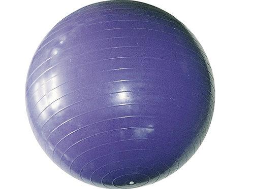 75cm韻律球/顆