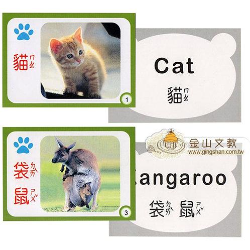 雙語動物識字卡