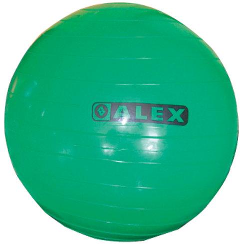 55cm韻律球/顆
