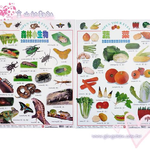 [編號: 20544 ] 蔬菜‧森林生物 雙面掛圖