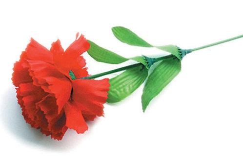 康乃馨單朵