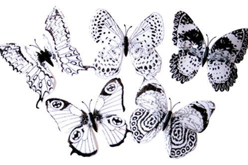 彩繪黑白蝴蝶10隻