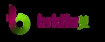 brkthru-logo-001.png