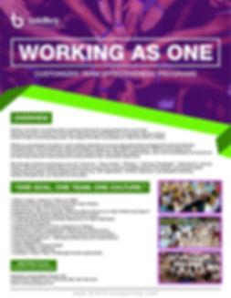 VER 1 Brkthru Program Brochure_Working A