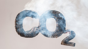 CO2 Emissions During The World Pandemic - Mihael Gubas