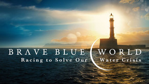 Documentary Review: Brave Blue World - Başak Bozoğlu