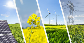 The Belt and Road's Clean Energy Agenda - Hikmet Can Çakan