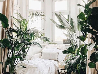 5 Botanical Styles Interior Design
