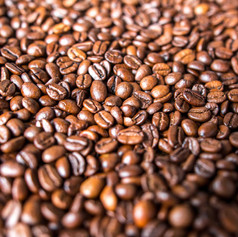 coffee beans stock picture.jpg