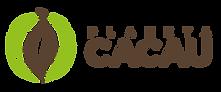 Produção de Cacau Cru e Orgânico: Nibs e Chocolate 70%