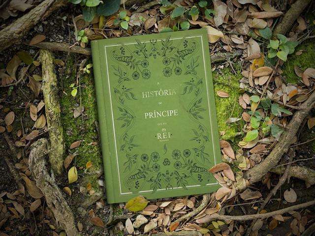 A História do Príncipe que foi Rei