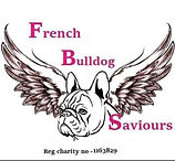french bulldog saviours.jpg