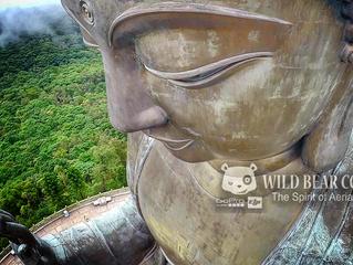 Wild Bear Company 被香港寶蓮寺邀請拍攝大佛