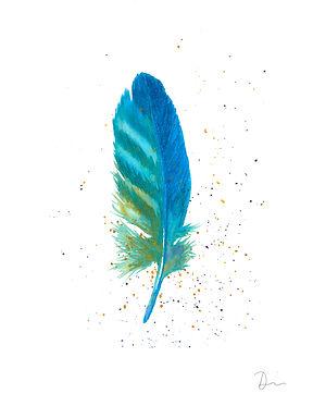 Blue Feather 2 - no watercolor backgroun