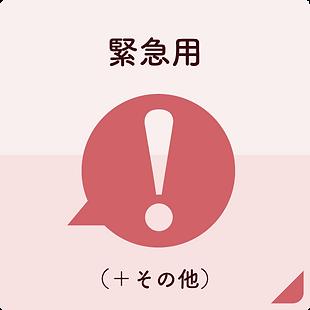 ピアノレッスンの緊急用(生徒のページ).png