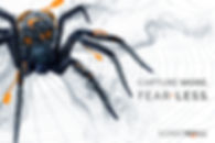 Capture More Fear Less - web banner 630x420.jpg
