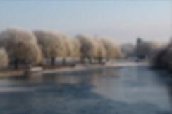 Winter scene2.jpg