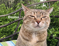 02 February 2021 Deusa.jpg