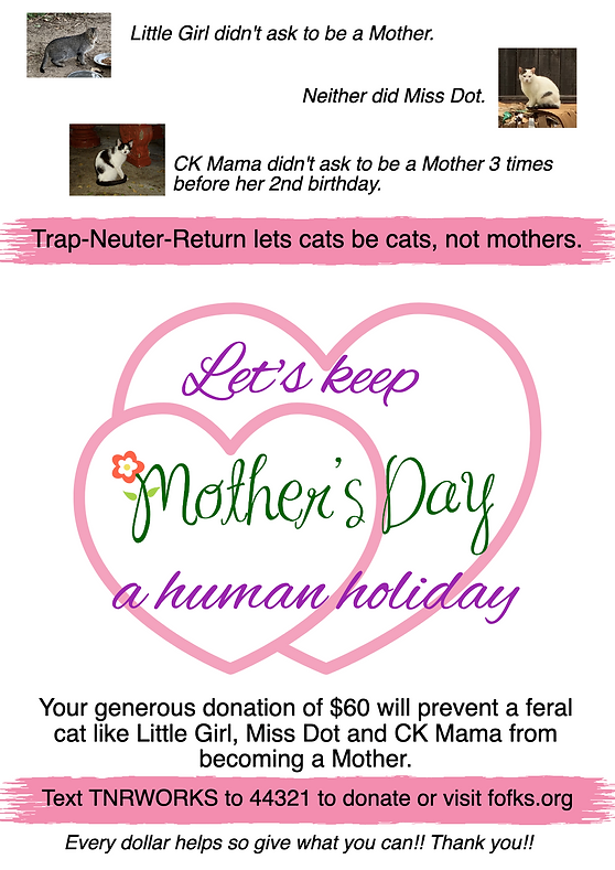 FOF May Mothers Day Graphic.png