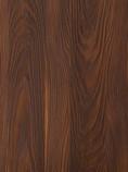 sequoya.jpg