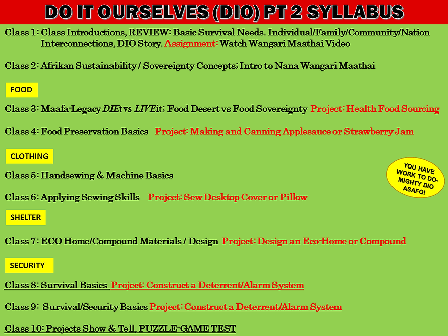 DIO PT 2 FEBRUARY 2021 SYLLABUS.png