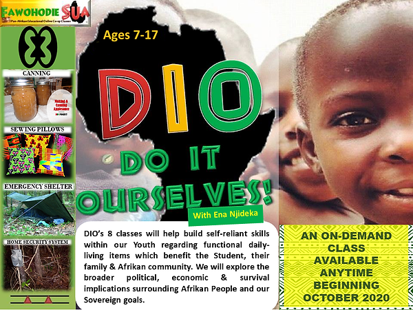 DIO ON-DEMAND FLYER 2020.png