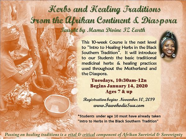 HERBS & HEALING TRADITIONS FROM THE AFRI