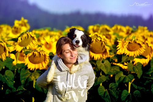 Happy among Sunflower