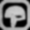 Helmet Icon .png