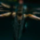 FINLAY_bones_3000x3000.png