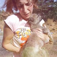 Gönüllü Hayvan Kurtarıcısı, Hayvan Hemşiresi, Vetnurse, Mine Vural