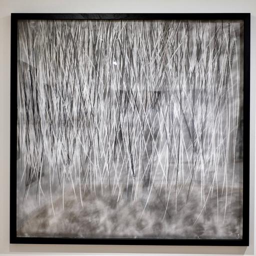 Stormline