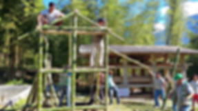Cañas bambú