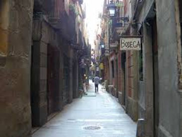Barcelona Gothic Walking Tour with an expert