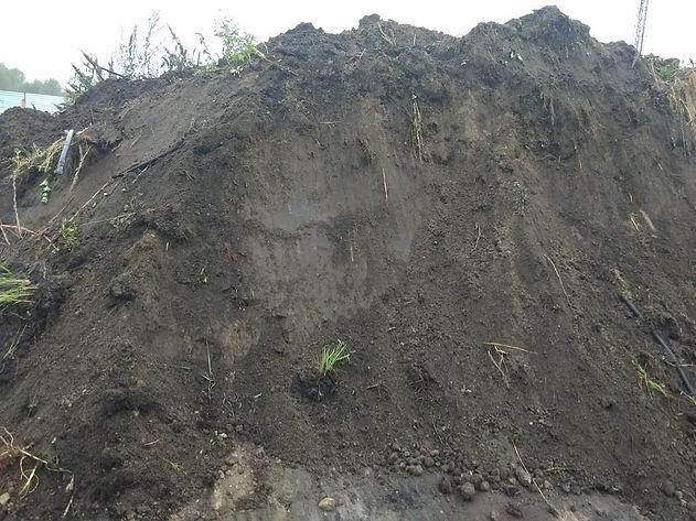Плодородная земля с доставкой в Ногинск,