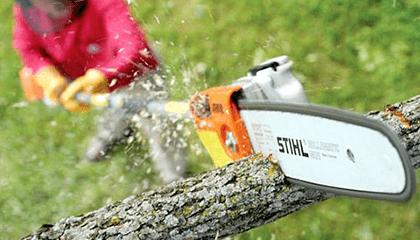 ht131-stihl-pole-pruner-lifestyle