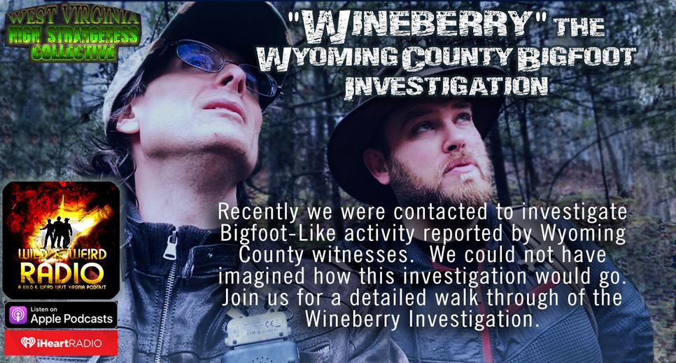 BF_WineberryBnr.jpg