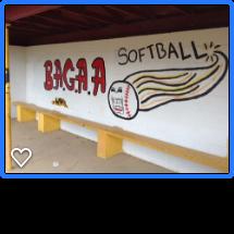 BAGAA Softball full sign.png